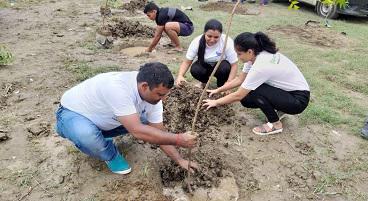 Environment / Tree Plantation